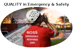 Master in Emergency Safety icon